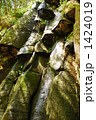 赤目四十八滝 雨降滝 滝の写真 1424019