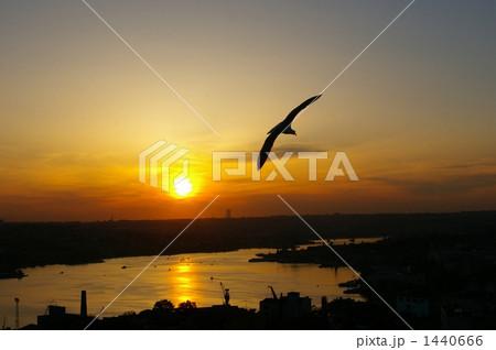 イスタンブールの夕景 1440666