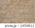琉球石灰岩 石材 壁の写真 1450611