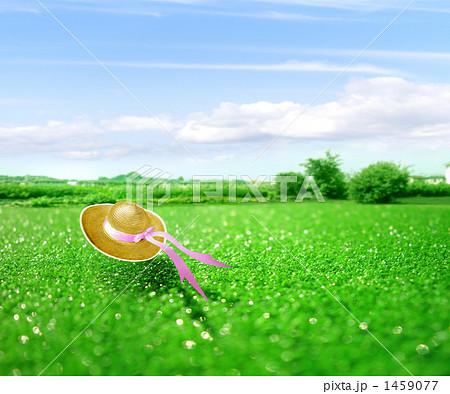 草原に飛ぶ麦藁帽子 合成  1459077