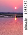 田植え 1468962