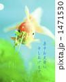 金魚 1471530