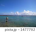 青空 海岸 釣りの写真 1477702