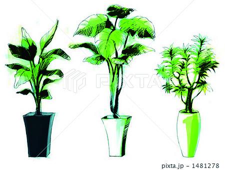 観葉植物 イラストのイラスト素材 1481278 Pixta