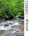赤石川 1488852