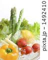 アスパラガス サラダ食材 野菜の写真 1492410