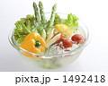 アスパラガス サラダ食材 野菜の写真 1492418