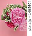 牡丹と薔薇~ピンク背景 1495604