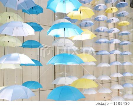 傘のディスプレイ 1509450