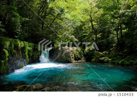 菊池渓谷のエメラルドブルーの川面 1510433
