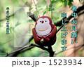 森のサル 1523934