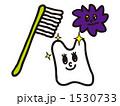 歯磨き 1530733