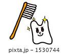 歯磨き 1530744
