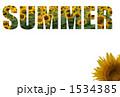 SUMMER_向日葵 1534385