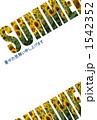 ひまわり_SUMMER 1542352