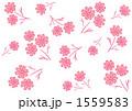 コスモス模様(白背景ピンク) 1559583