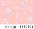 コスモス模様(ピンク背景) 1559591