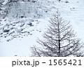 メール・ド・グラス氷河 1565421