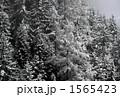 山の雪景色 1565423