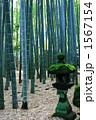 石灯篭 報国寺 鎌倉の写真 1567154