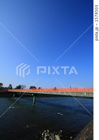 写真素材: 青空に映える