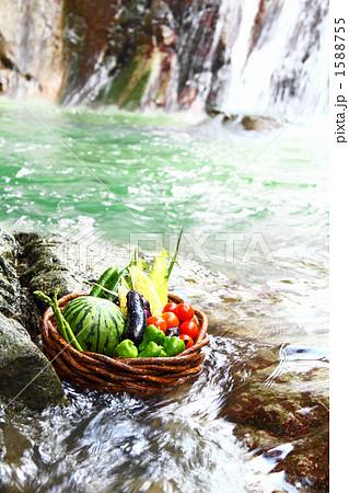 滝と水とフレッシュ野菜の盛り合わせ 1588755