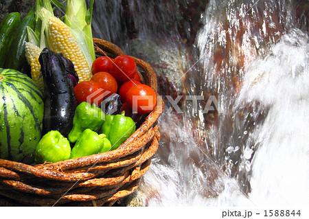 川と水とフレッシュ野菜の盛り合わせ 1588844