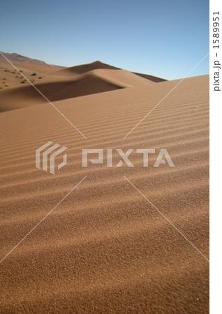 ナミブ砂漠の風紋 1589951
