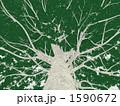 巨木 1590672