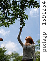 空を見上げる女性 1591254