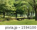 初夏の公園 1594100