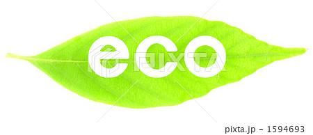 葉と白抜き文字(eco) 1594693