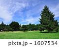 公園風景 1607534