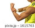 力こぶ 上腕二頭筋 上腕筋の写真 1615763