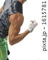 力こぶ 上腕二頭筋 上腕筋の写真 1615781