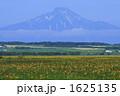 サロベツ原野と利尻富士 1625135