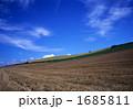 丘の曲線Ⅱ 1685811