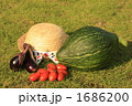 夏野菜 1686200