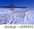 雪原に向かってⅡ 1694635