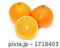 ミカン 蜜柑 クレメンタインの写真 1718403