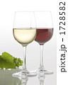 果実酒 洋酒 葡萄酒の写真 1728582