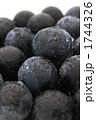 巨峰 種なし巨峰 ブドウの写真 1744326