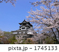 天守閣 犬山城 平山城の写真 1745133