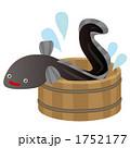 魚類 魚介類 魚介のイラスト 1752177