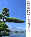 松と富士山-7380 1753427