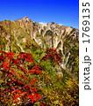 鹿島槍ヶ岳 山 自然の写真 1769135