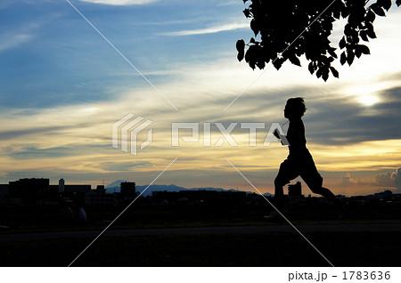 夕方のジョギンク 若者 1783636