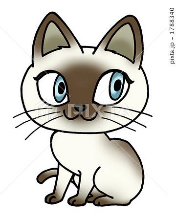 シャム猫のイラスト素材 1788340 Pixta