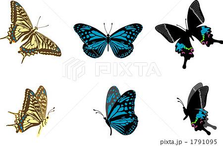 アゲハ蝶のイラスト素材 1791095 Pixta