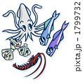 魚介類 シーフード 海産物のイラスト 1799732